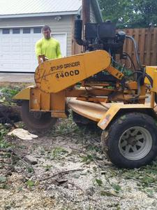 Stump Removal Lincoln, Nebraska - Tree Service Pros