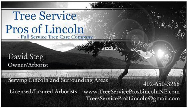 Tree Service - Lincoln, Nebraska